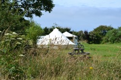 Camping at Spring Meadow